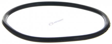 Кольцо уплотнительное бензонасоса Газель,Соболь дв.405 (3111-1101022) г.Н.Новгород